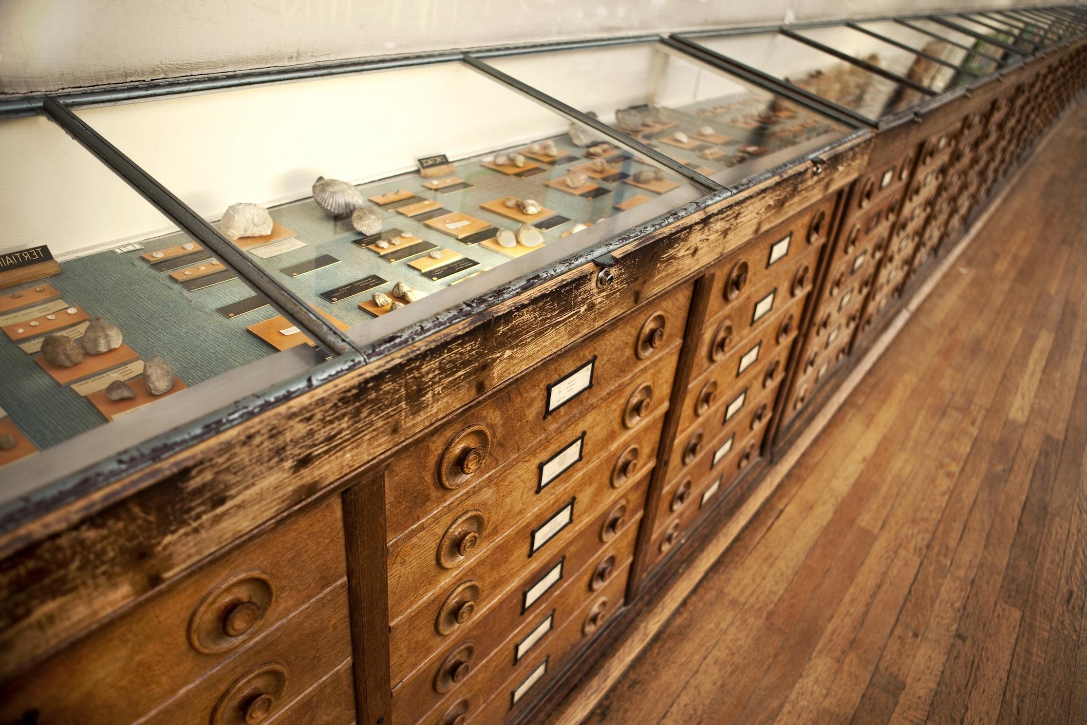 museum-displays